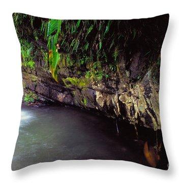 Puerto Rico Waterfall Throw Pillow by Thomas R Fletcher
