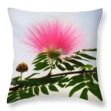 Puff Of Pink - Mimosa Flower Throw Pillow by MTBobbins Photography