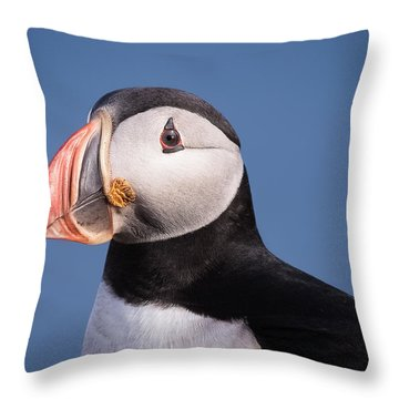 Puffin 1 Throw Pillow