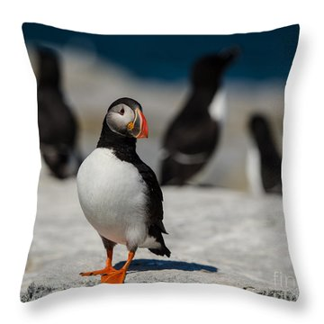 Puffin Chillin Throw Pillow
