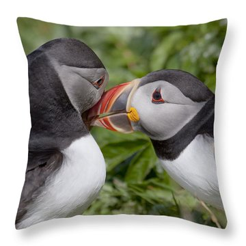Puffin Love Throw Pillow