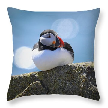 Puffin Time Throw Pillow