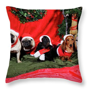 Pugs And Dachshounds Dressed As Father Christmas Throw Pillow