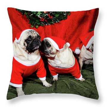 Pugs Dressed As Father-christmas Throw Pillow