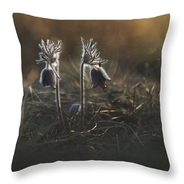 Throw Pillow featuring the photograph Pulsatilla Nigricans by Davorin Mance