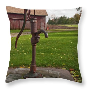 Throw Pillow featuring the photograph Pump 13951 by Guy Whiteley
