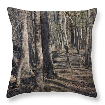 Pumpkin Ash Trail Throw Pillow