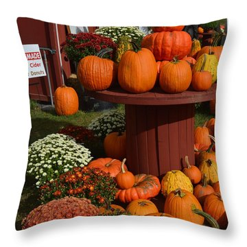 Pumpkin Display Throw Pillow