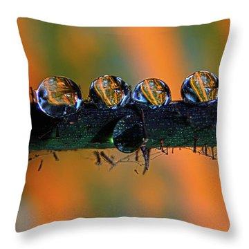 Pumpkin Drops Throw Pillow