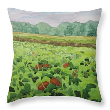 Pumpkin Field Throw Pillow by Bethany Lee
