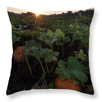 Throw Pillow featuring the photograph Pumpkin Patch by Aaron J Groen