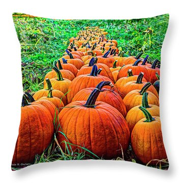 Pumpkin Patch Throw Pillow by Dale R Carlson