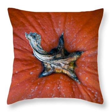 Pumpkin Stalk Throw Pillow