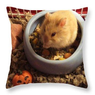 Pumpkin With Pumpkin Throw Pillow