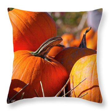 Throw Pillow featuring the photograph Pumpkins 2 by Sharon Talson