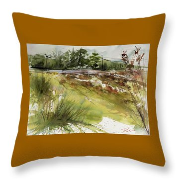 Pumpkins On Rt. 13 Throw Pillow