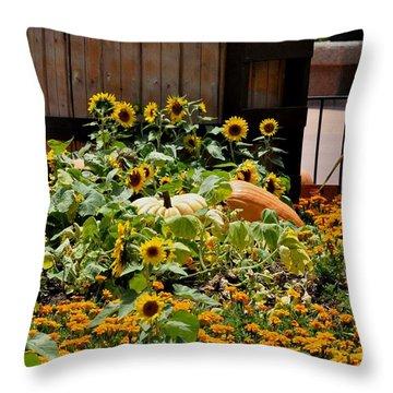 Pumplin Patch Throw Pillow by John Black