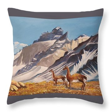 Puna De Atacama Throw Pillow