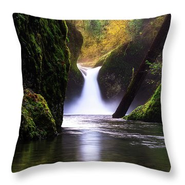 Punch Bowl  Throw Pillow by Bjorn Burton
