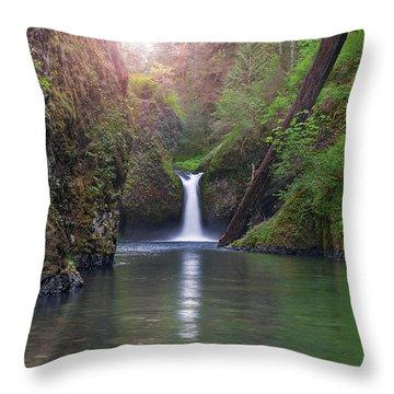 Punch Bowl Falls Throw Pillow by David Gn