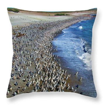 Throw Pillow featuring the photograph Punta Tombo Megellan Penguins by Michele Penner