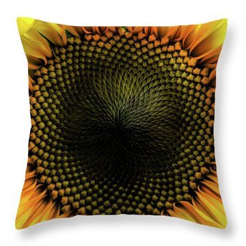 Pupil Throw Pillow
