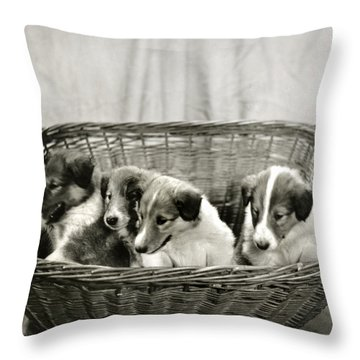 Puppies Of The Past Throw Pillow by Marilyn Hunt