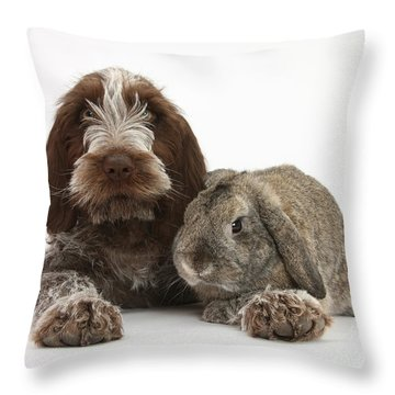 Puppy And Rabbt Throw Pillow by Mark Taylor