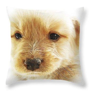 Puppy Art Throw Pillow by Svetlana Sewell