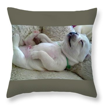 Puppy Dog Dreams Throw Pillow by Russell Keating