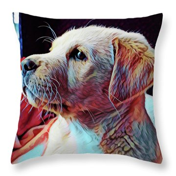 Puppy Dog Throw Pillow by Gary Grayson
