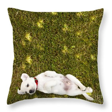 Puppy In The Grass Throw Pillow