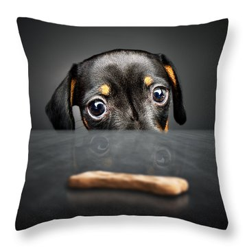 Adorable Throw Pillows
