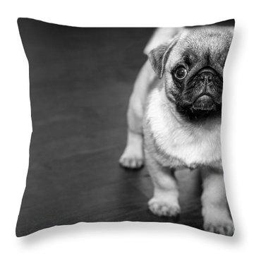 Puppy - Monochrome 2 Throw Pillow