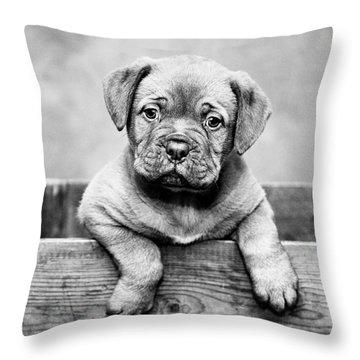 Puppy - Monochrome 3 Throw Pillow
