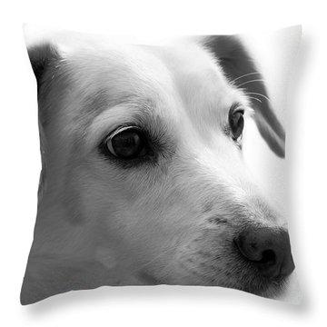 Puppy - Monochrome 4 Throw Pillow