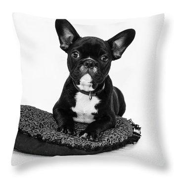 Puppy - Monochrome 5 Throw Pillow