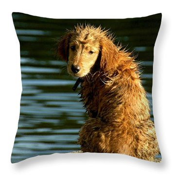Puppy On The Pier Throw Pillow