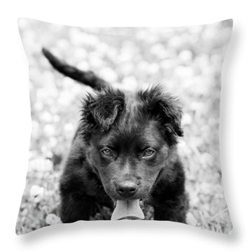 Puppy Play Throw Pillow