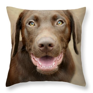 Puppy Power Throw Pillow by Kathy M Krause