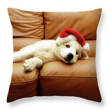 Dogs Throw Pillows
