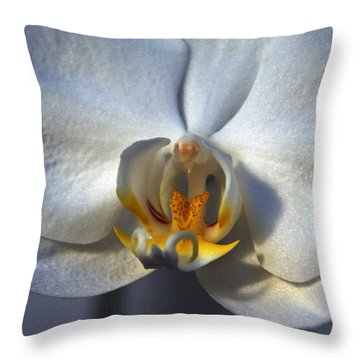 Throw Pillow featuring the photograph Pure Form And Color by Lynda Lehmann