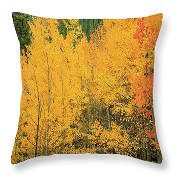 Pure Gold Throw Pillow