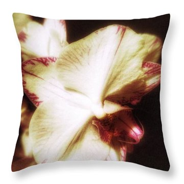 Throw Pillow featuring the photograph Pure by Isabella F Abbie Shores FRSA