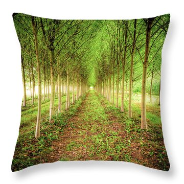 Throw Pillow featuring the photograph Craven Farms by Spencer McDonald
