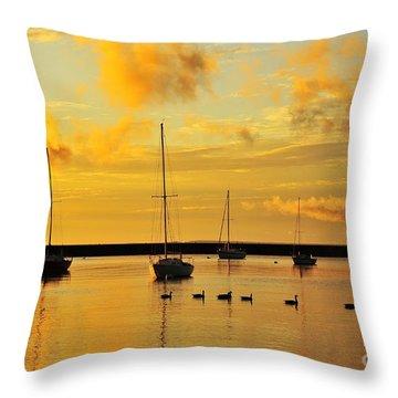 Pure Michigan Gold Throw Pillow