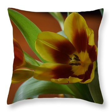 Throw Pillow featuring the photograph Pure Passion by Deborah  Crew-Johnson