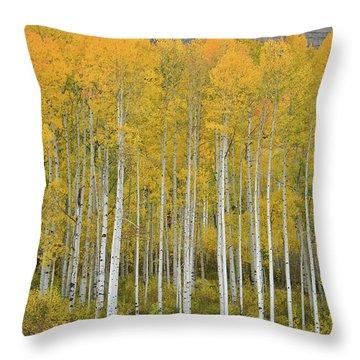 Purgatory Aspen Grove Throw Pillow