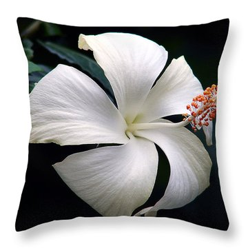 Throw Pillow featuring the photograph Purity by Blair Wainman