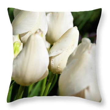 Purity II Throw Pillow by Tamyra Ayles